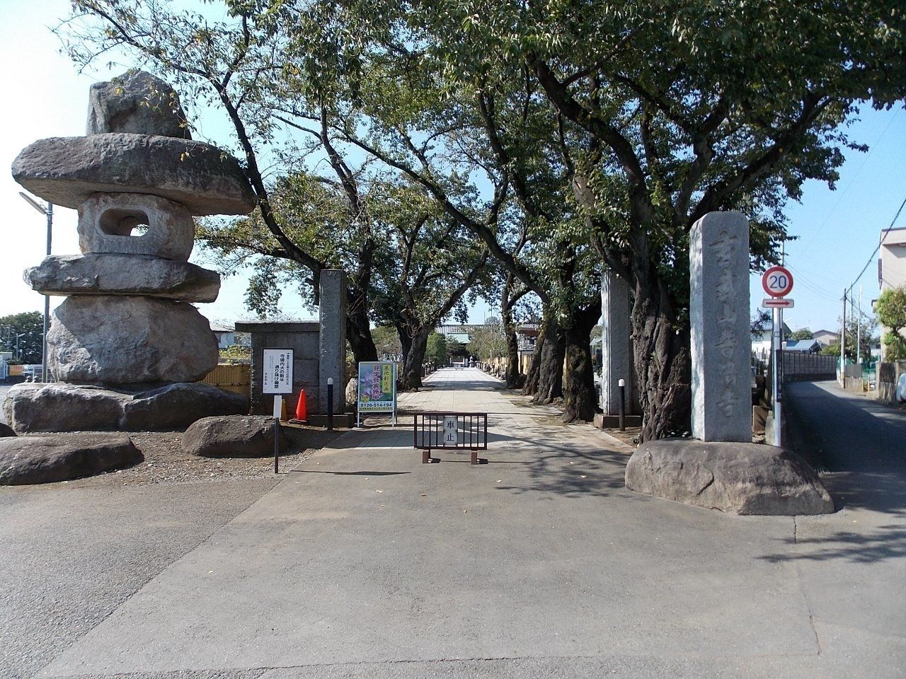 立川の歴史的なお寺で、入口には綺麗な桜があります。