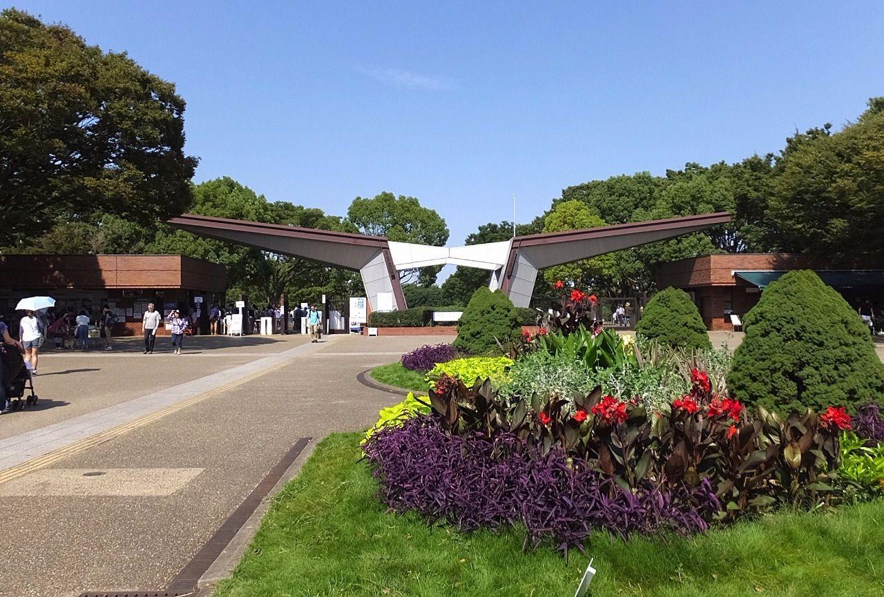 夏には花火大会がある、西立川駅北側に広がる国営公園。