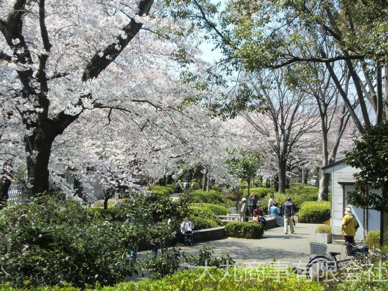 春には桜がきれい咲きます。ウォーキングやジョギングにも最適です。