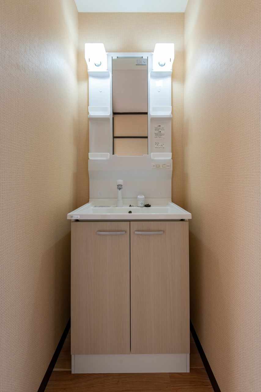 シャワー付蛇口のある洗面台