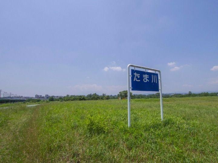 立川市富士見町の多摩川河川敷