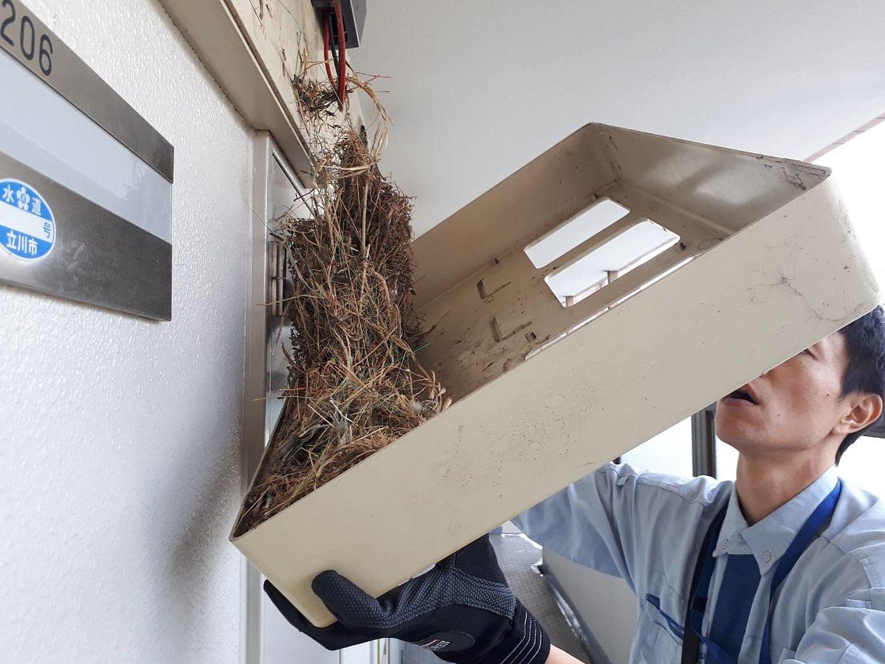 スマートメーターに変更で鳥に好かれるメーターボックスに